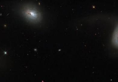 NGC 839, NGC 838, NGC 835 y NGC 833, un extraño cuarteto de galaxias