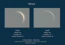 """La """"evolución"""" de Venus del 1 al 7 de agosto"""