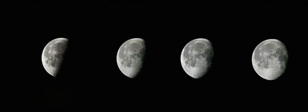 Joe-McBride-Moon-Aug-3456_1438914850