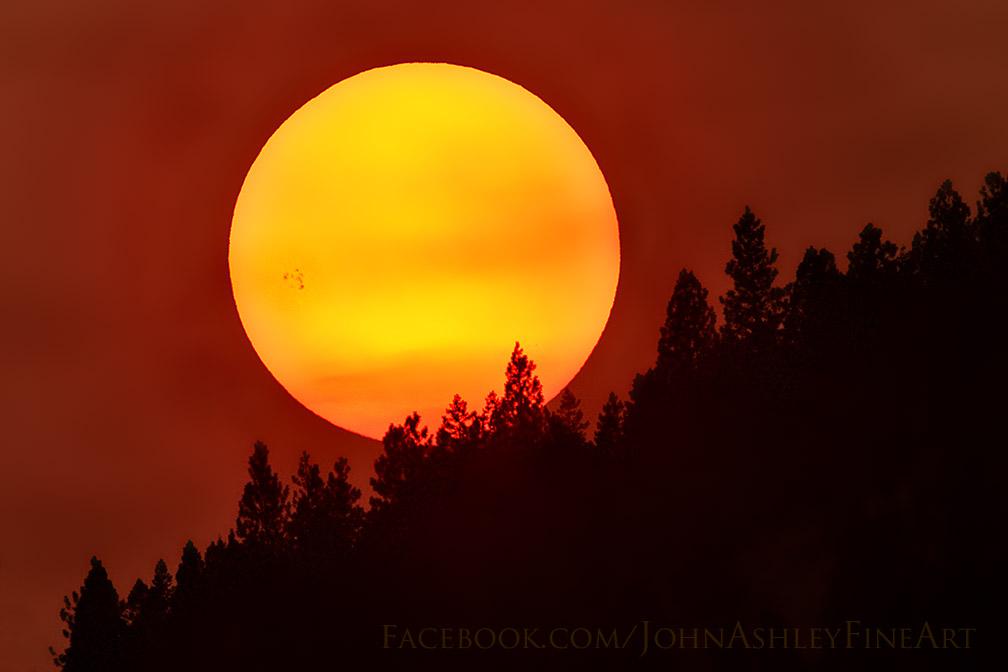 John-Ashley-Sunspot-AR-2403_1440126919