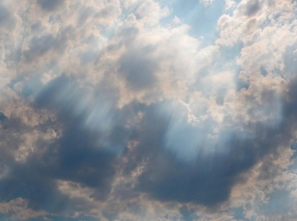 M.-Sid-Kelly-smoke-rays-mrb-4_2015_08_01_1638_1438486144