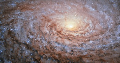 La Galaxia M63: un girasol cósmico