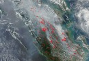 Incendios en el sur de la isla de Sumatra