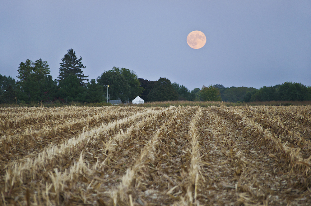 Looking east at rising supermoon over farmstead west of Lyons Drive in Marion, Iowa. 7:04 pm CDT, Sunday, September 27, 2015.
