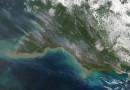 Incendios en el sur de Nueva Guinea