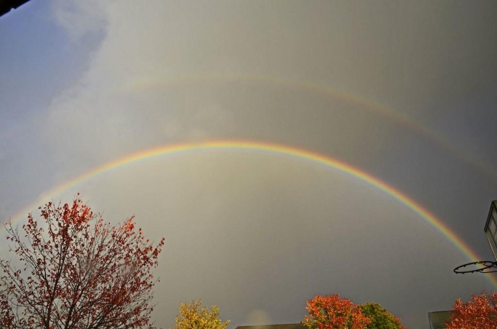 Jun-Lao-L-Rainbow-Oct-28-2015-1807-EDT-c_1446076312