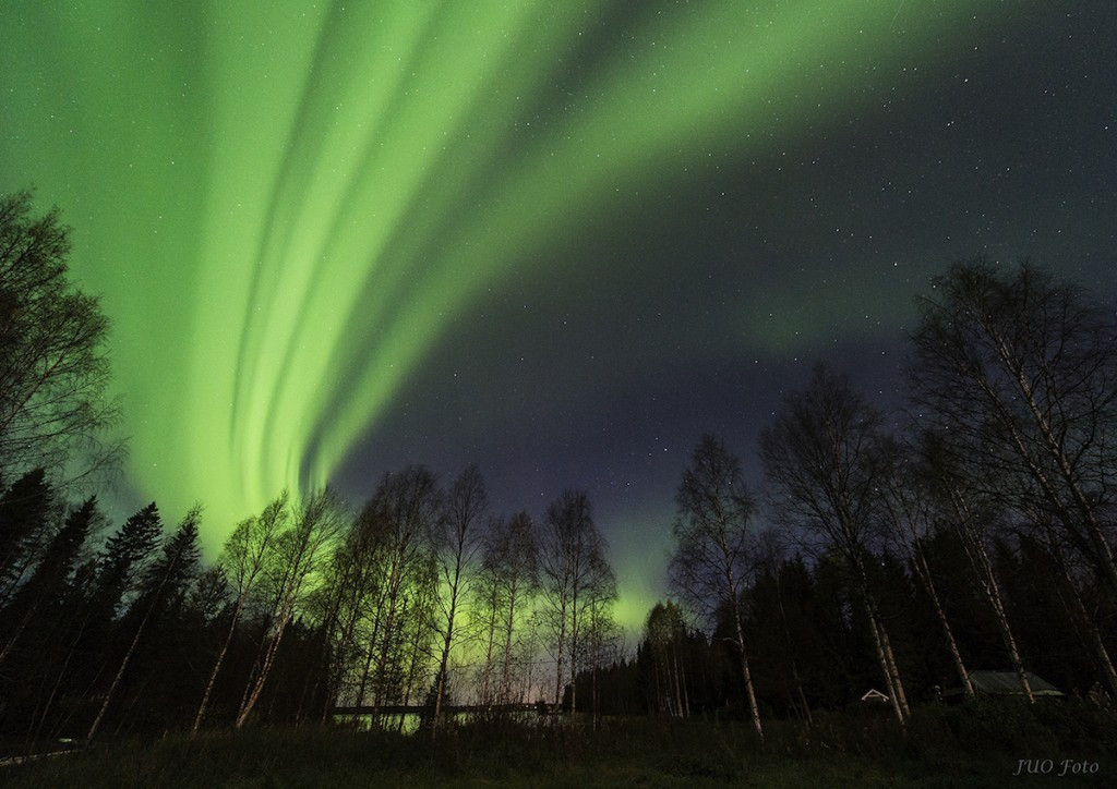 Ulf-Jonsson-Norrsken-GussoI_JUO2049-kopiera-L_1444078583