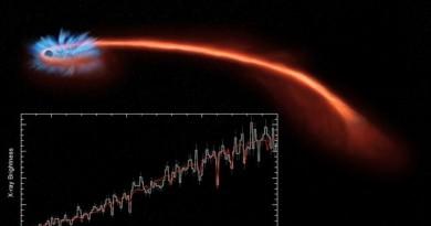 Astrónomos observan a un agujero negro despedazando una estrella