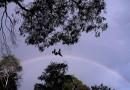 Arcoíris desde Australia