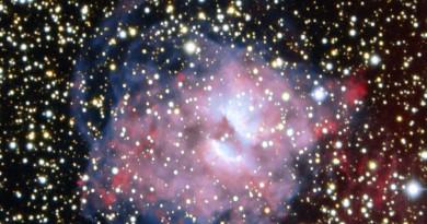 La nebulosa planetaria NGC 3699: una estrella en los últimos instantes de su vida