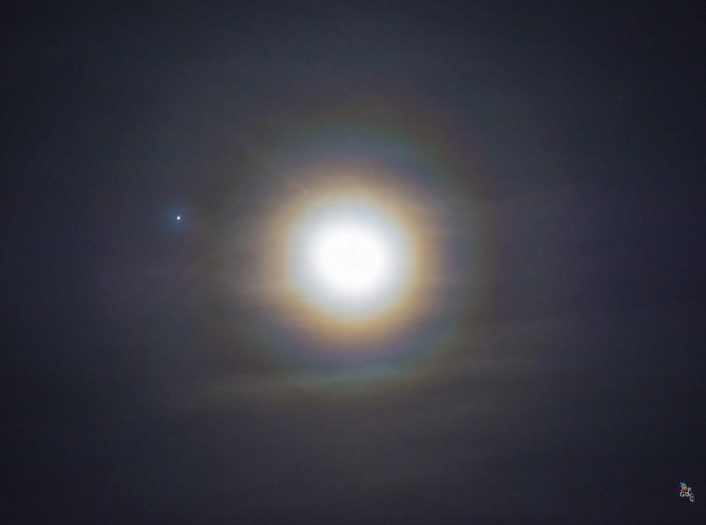Marcella-Giulia-Pace-Giove-luna-corona270116NIK_9111_2L_1453999508