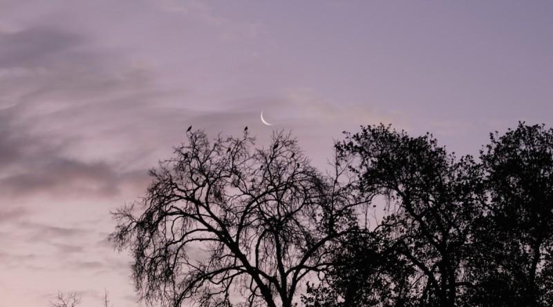 La Luna al atardecer desde Chile – El Universo Hoy