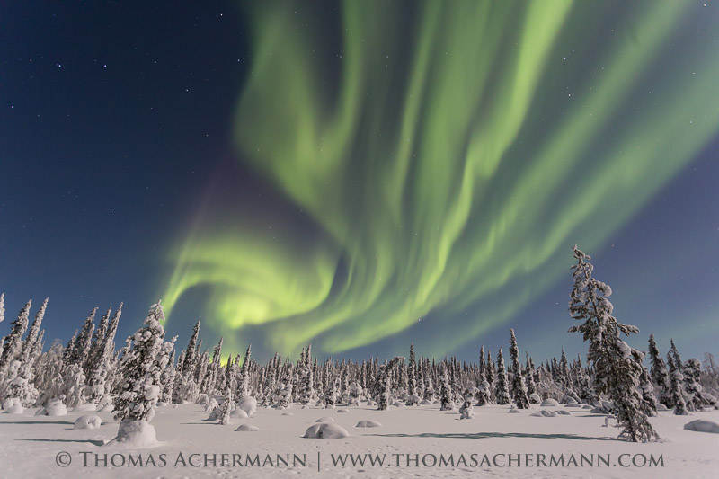 Thomas-Achermann-20160120_lapland_0093_1453926013