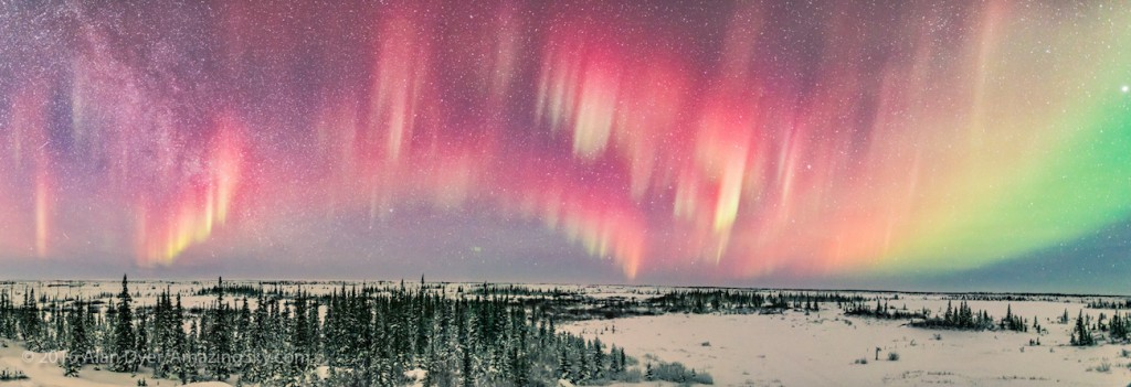 A panorama across the north of a faint aurora just visible to the eye but very photogenic to the camera. These curtains were primarily red from high altitude oxygen, with only the very bottom of the curtains penetrating low enough to excite the green auroral line. This was from the Churchill Northern Studies Centre, Feb 12, 2016. Later that night the aurora exploded in intensity for a spectacular all-sky display. At left here is the Milky Way in Cygnus and Cepheus in the northwest. Just left of centre is the star Vega, here circumpolar at 58° N latitude. At right is the star Arcturus. Jupiter is on the right edge of the frame. This is a panorama, stitched in Adobe Camera Raw, of 4 segments, each 10 seconds, with the 20mm Sigma Art lens at f/1.4 and Nikon D750 at ISO 3200.