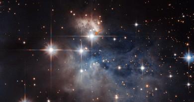 """La """"huella dactilar"""" de la estrella IRAS 12196-6300"""
