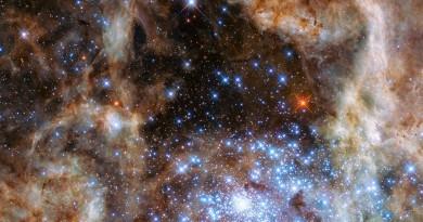 Las nueve estrellas gigantes del cúmulo estelar R136