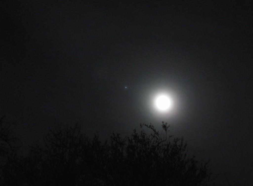 Gordon-Ward-Moon-a-Jupiter-21-03-16_1458593073