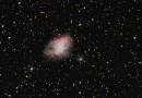 El Cometa 81P/Wild 2 y la Nebulosa del Cangrejo (Messier 1)