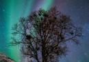 Auroras boreales desde Grøtfjorden, Noruega
