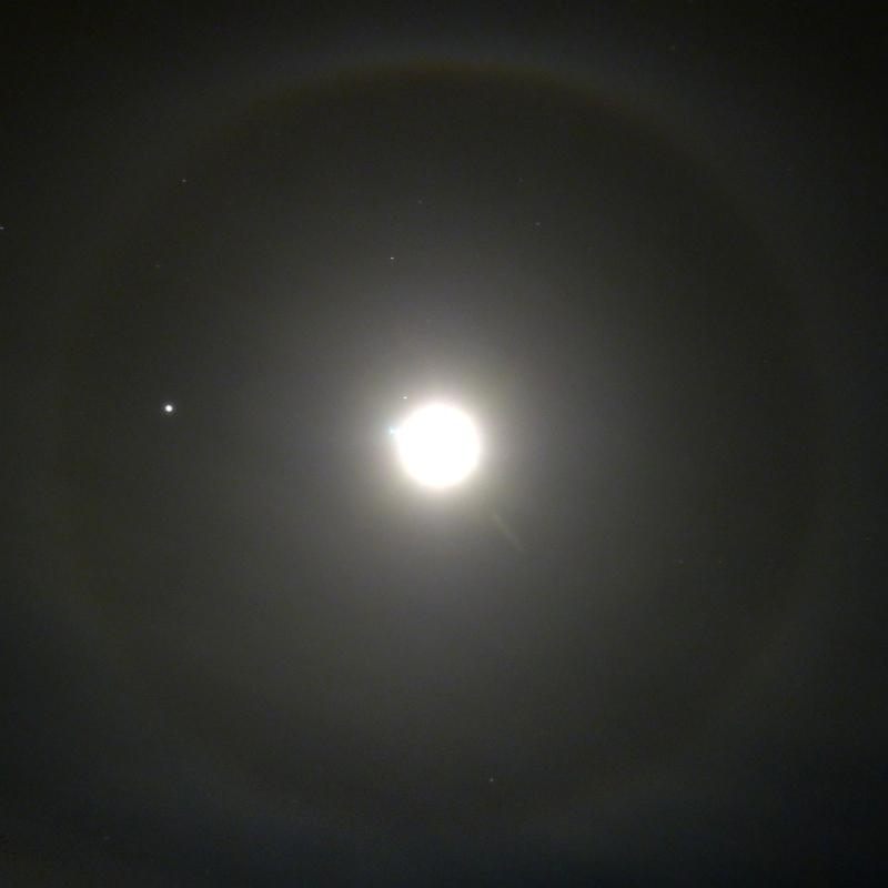 Heiko-Ulbricht-Halo-Ring_1460843232