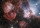 La vida y muerte de las estrellas en la Gran Nube de Magallanes