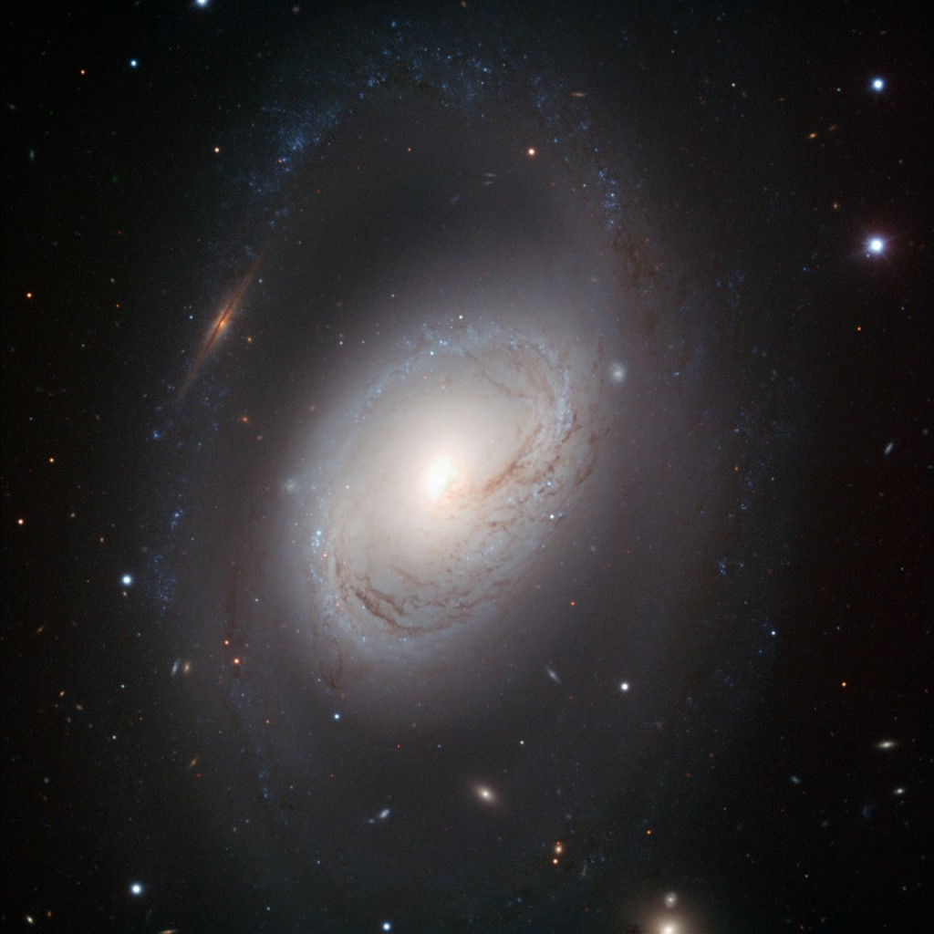 Not all spiral galaxies have to be picture-perfect to be striking. Messier 96, also known as NGC 3368, is a case in point: its core is displaced from the centre, its gas and dust are distributed asymmetrically and its spiral arms are ill-defined. But this portrait, taken with the FORS1 instrument on ESO's Very Large Telescope, shows that imperfection is beauty in Messier 96. The galaxy's core is compact but glowing, and the dark dust lanes around it move in a delicate swirl towards the nucleus. And the spiral arms, patchy rings of young blue stars, are like necklaces of blue pearls.  Messier 96 lies in the constellation of Leo (The Lion). It is the largest galaxy in the Leo I group of galaxies; including its outermost spiral arms, it spans some 100 000 light-years in diameter — about the size of our Milky Way. Its graceful imperfections likely result from the gravitational pull of other members in the group, or are perhaps due to past galactic encounters. A multitude of background galaxies peers through the dusty spiral. Perhaps the most striking of these objects is an edge-on galaxy that — because of a chance alignment — appears to interrupt the outermost spiral arm to the upper left of Messier 96's core. This image was processed by ESO using the observational data found by Oleg Maliy from Ukraine, who participated in ESO's Hidden Treasures 2010 astrophotography competition [1], organised in October–November 2010, for everyone who enjoys making beautiful images of the night sky using astronomical data obtained with professional telescopes. The image was made with data taken at visible and infrared wavelengths through B, V, and I filters. Notes [1] ESO's Hidden Treasures 2010 competition gave amateur astronomers the opportunity to search through ESO's vast archives of astronomical data, hoping to find a well-hidden gem that needed polishing by the entrants. To find out more about Hidden Treasures, visit http://www.eso.org/public/outreach/hiddentr