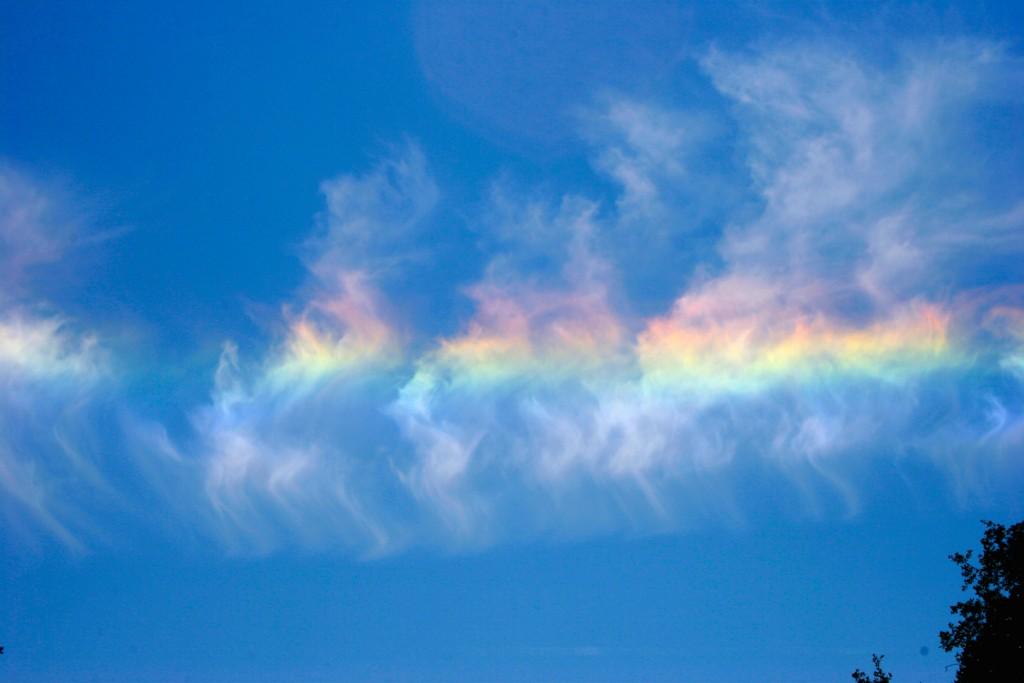 Andy-Skinner-rainbow3_1464550021