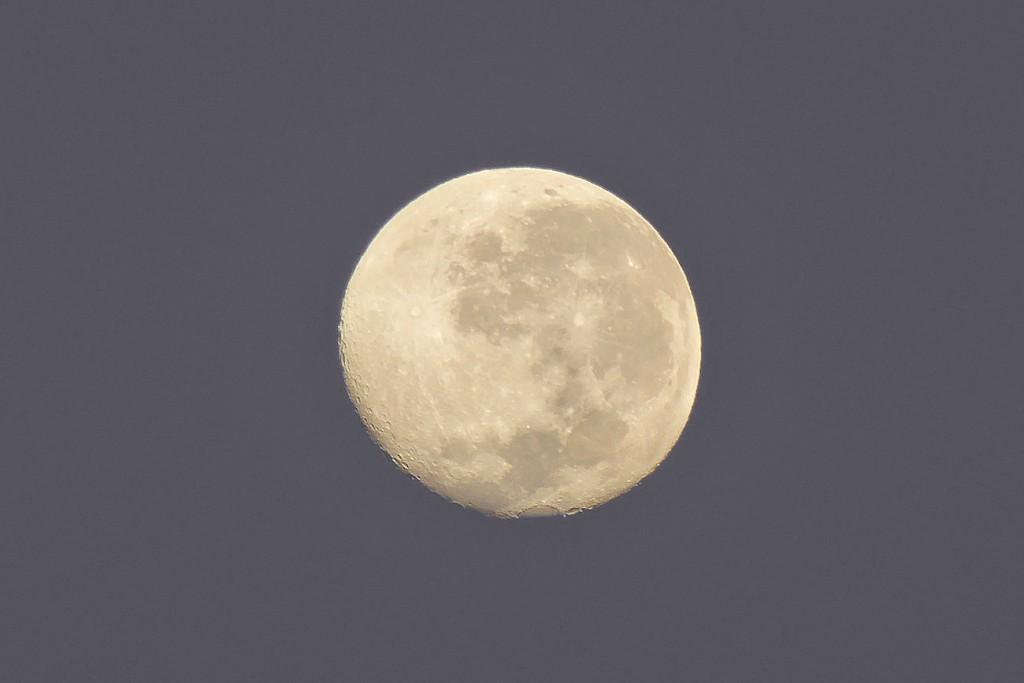 Peter-Lowenstein-Moon-showing-Mare-Crisium-at-Dawn-Mutare-Zimbabwe_1464122479