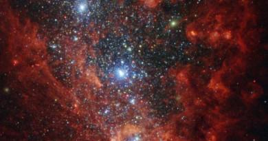 NGC 1569: una galaxia rebosante de estrellas