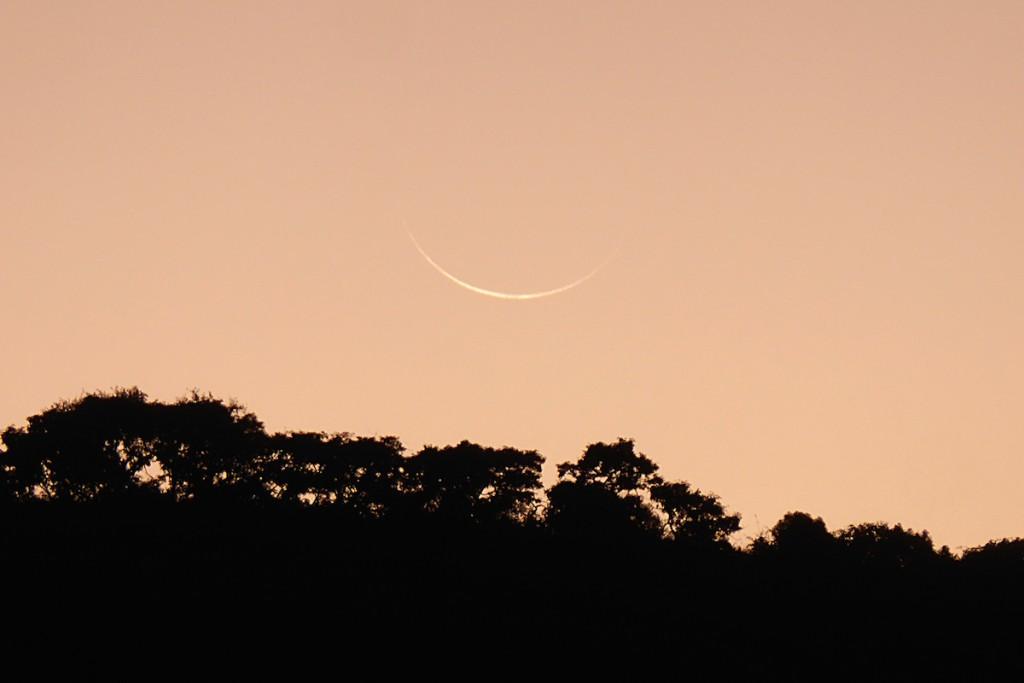 Peter-Lowenstein-Ultra-thin-Waning-Crescent-Moon-at-Dawn-2-Mutare-Zimbabwe_1465030336