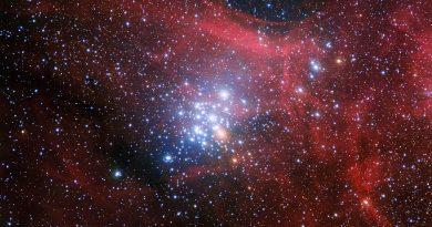 La vida y muerte de estrellas hermanas