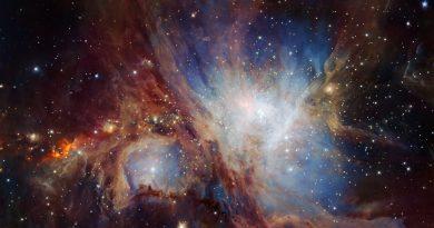 Observando en las profundidades de la Nebulosa de Orión