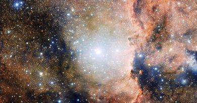 Un gran espectáculo de estrellas nuevas en la constelación de Ara