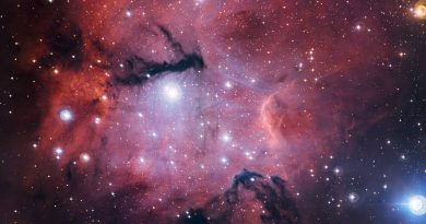 Estrellas jóvenes que esculpen y destruyen el lugar donde se formaron