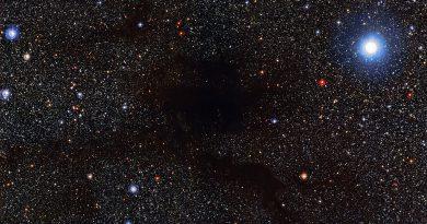 Lupus 4: una nube oscura en la constelación del Lobo