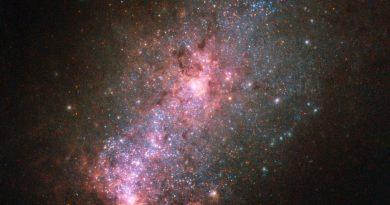 La galaxia NGC 3125: una gran productora de estrellas