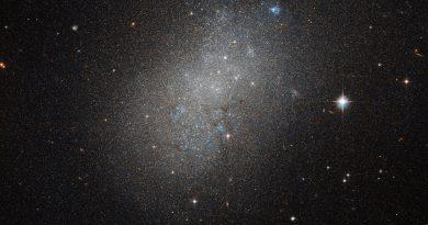 Una isla de estrellas en medio del océano intergaláctico
