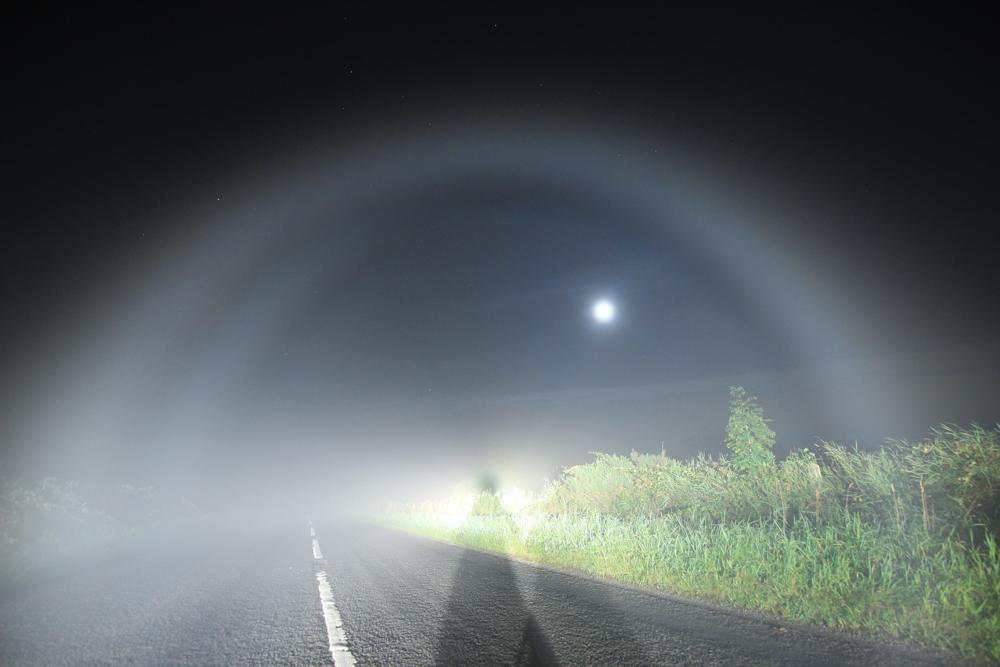 Martin-McKenna-fogbow2-1-of-1_1472002078