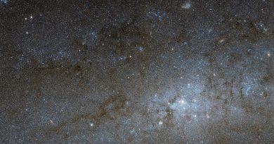 Observando el centro galáctico de NGC 247