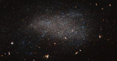 Un enjambre de estrellas en la constelación de Coma Berenices