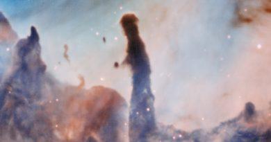 La colorida nebulosa de Carina, devastada por brillantes estrellas cercanas