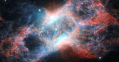 Los restos de una estrella en la constelación de Cygnus (el Cisne)