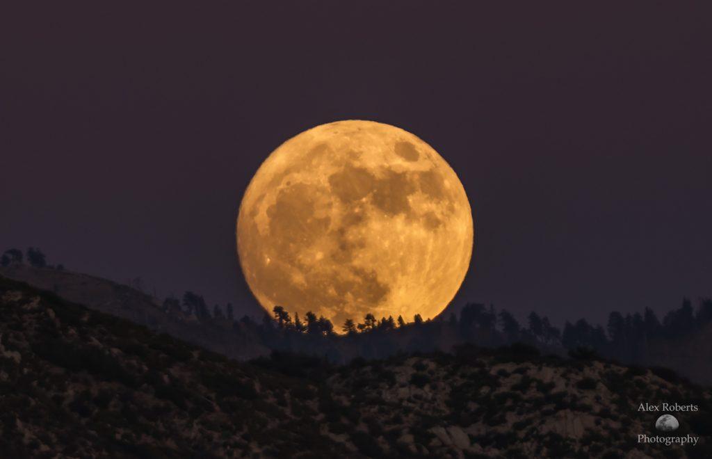 alex-roberts-super-moon-rising-november-2016_1479106164
