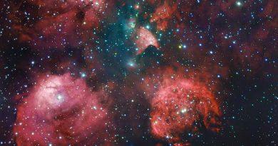 Las guarderías estelares de la Nebulosa Pata de Gato