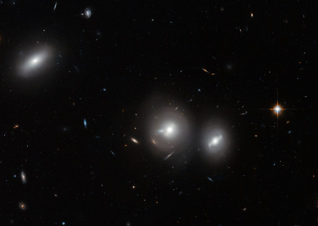 In this new image Hubble peeks into the Coma Cluster, a massive gathering of galaxies located towards the constellation of Coma Berenices. This large cluster is around 350 million light-years away from us and contains over 1000 identified galaxies, the majority of which are elliptical. The bright, saucer-shaped objects surrounded by misty halos in this image are galaxies, each of them host to many millions of stars. The background of the image is full of distant galaxies, many of them with spiral shapes, that are located much further away and do not belong to the cluster. Visible in this image are three galaxies within the Coma Cluster: IC 4041 (far left), IC 4042 (centre), and GP 236 (right). A version of this image was entered into the Hidden Treasures image processing competition by contestant Nick Rose. Links Hubble's sweeping view of the Coma cluster Wide-field view of the Coma cluster (ground-based image)