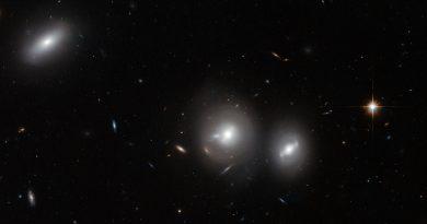 El masivo cúmulo galáctico de Coma Berenices