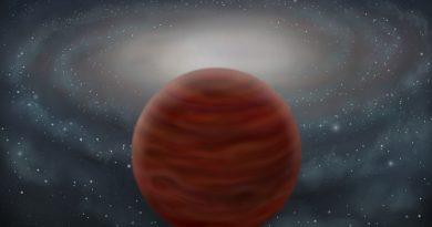 Astrónomos identifican a la enana marrón más pura y masiva conocida hasta hoy