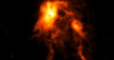 Una protoestrella resplandece y remodela su guardería estelar