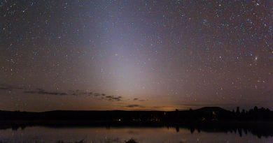 La Luz Zodiacal y la Galaxia de Andrómeda desde Arizona, EE. UU.
