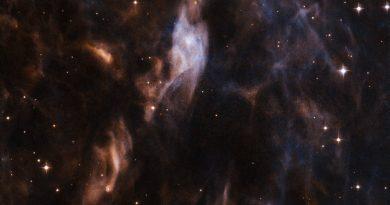 La nebulosa que rodea a la violenta estrella EZ Canis Majoris